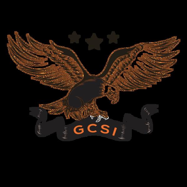 Logo de GCSI