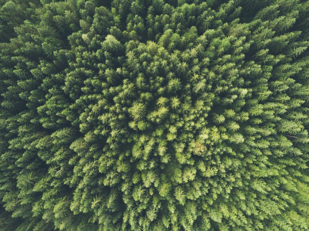 Eco-responsabilité TechTalks
